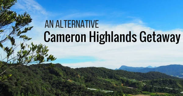 An Alternative Cameron Highlands Getaway