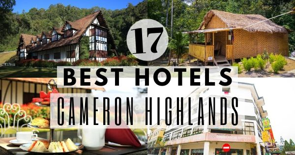 Best Hotels In Cameron Highlands