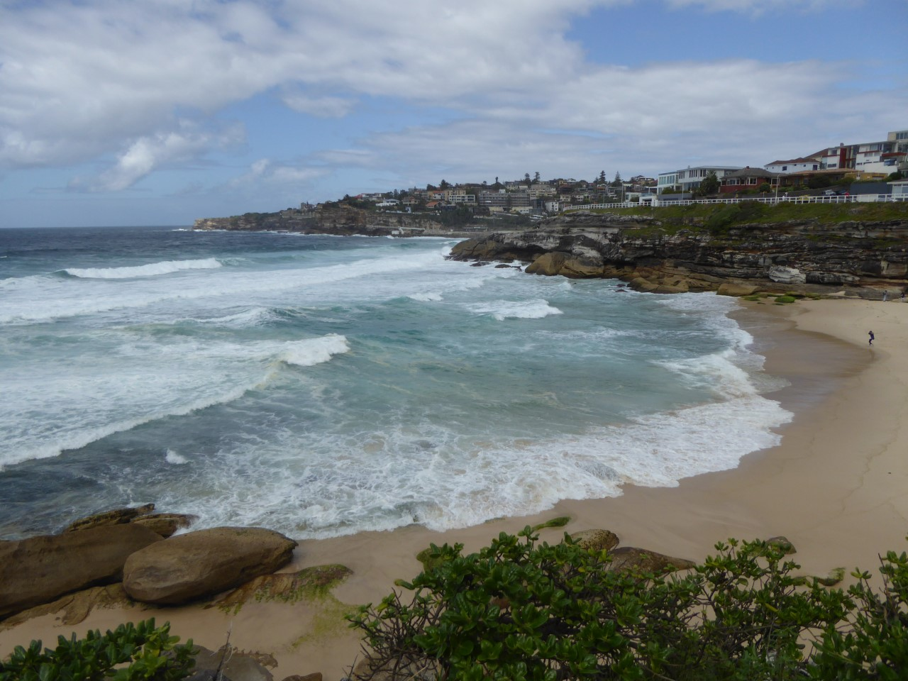 Bondi to Bronte beach coastal walk