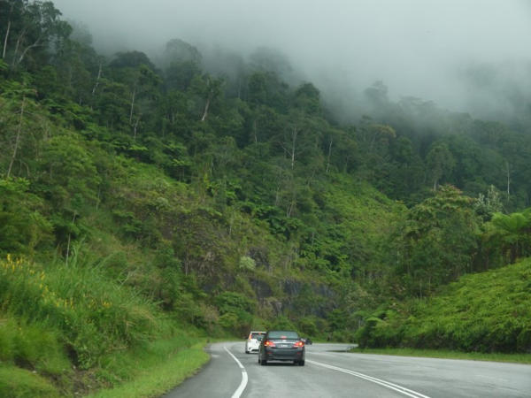 Driving Up To Cameron Highlands