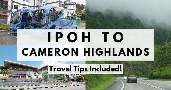 How To Get From Ipoh To Cameron Highlands (The Definitive Guide 2020)