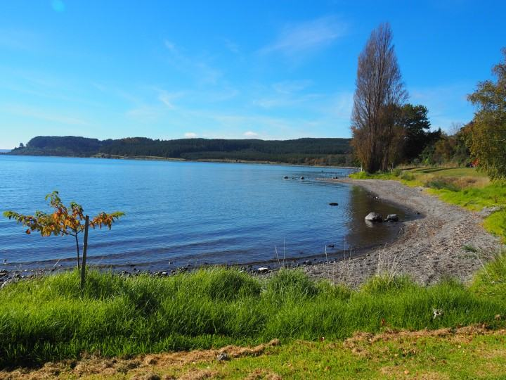 Lake Taupo - One of New Zealand's largest lakes in the North Island - Not too far from Tongariro Alpine Crossing - More on this must-do New Zealand day hike on www.travelswithsun.com