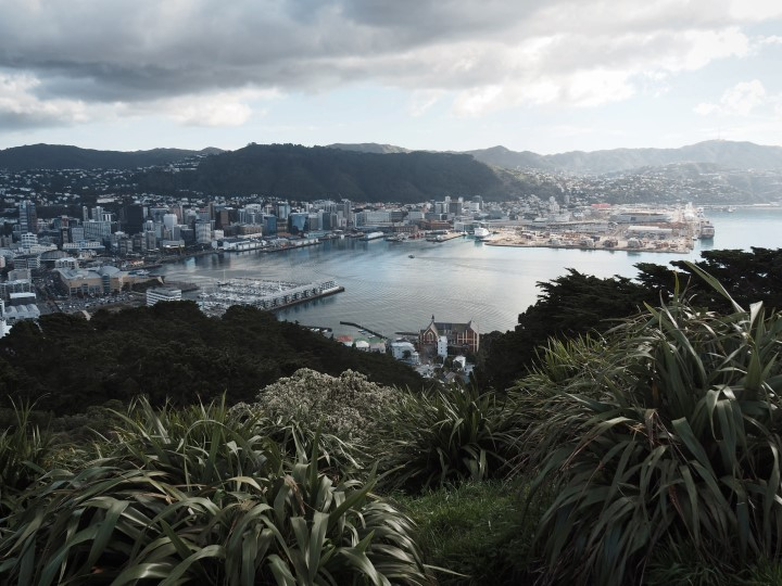 Mt Victoria lookout on Wellington - One of the highlights in our 1 month self-drive trip around New Zealand during winter. More on www.travelswithsun.com