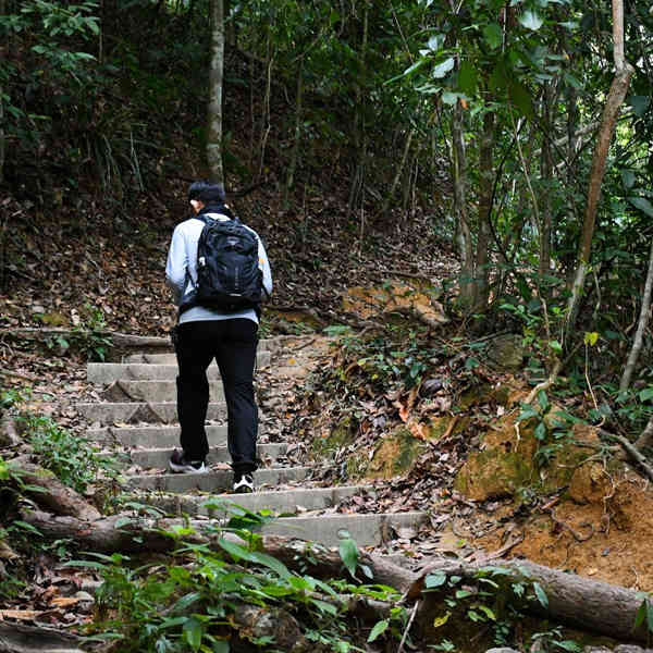 One Of The Hiking Trails To Penang Hill