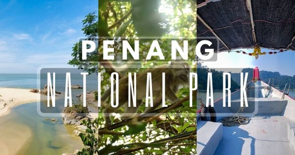 Penang National Park – Spend A Delightful Day Hiking In Nature (2020 Guide)