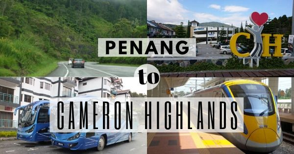 How To Get To Cameron Highlands From Penang