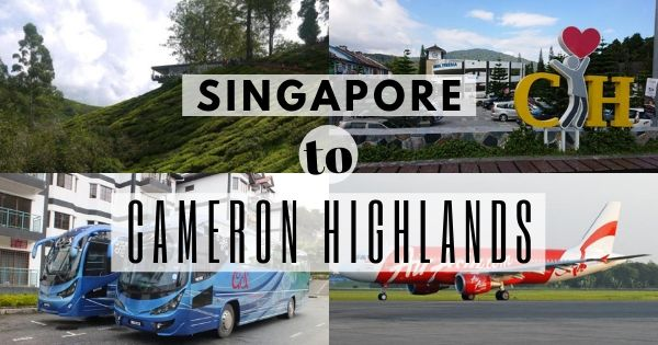 How To Go To Cameron Highlands From Singapore (Breakdown Of All Options!)