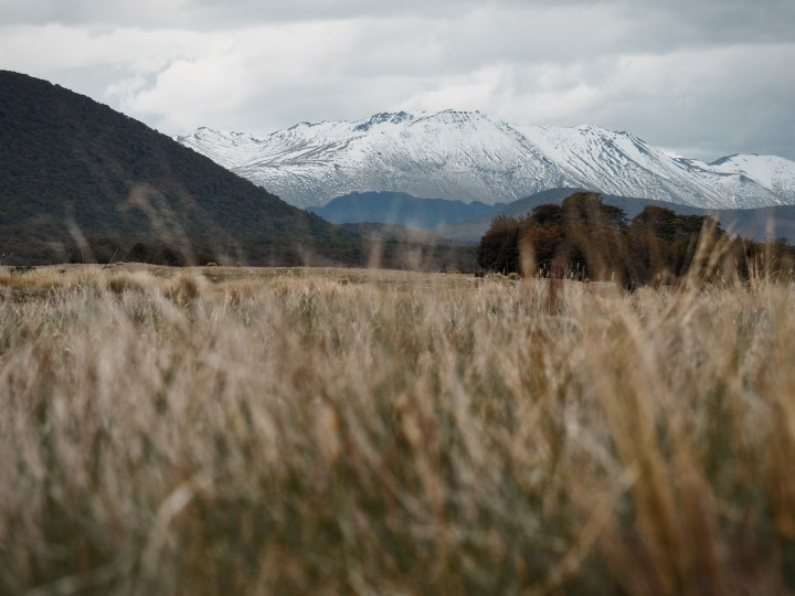 Snowy peaks visible from Mavora Lakes - more on what to expect on www.travelswithsun.com