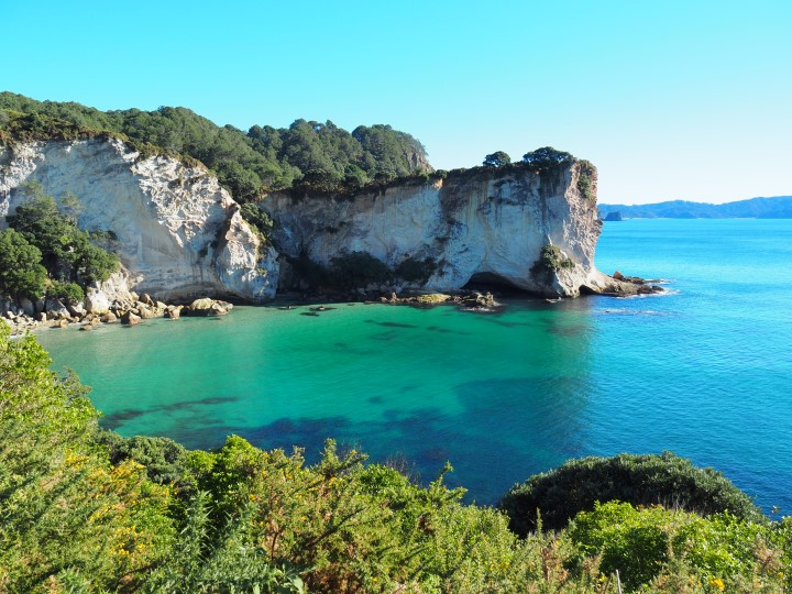 Stingray bay in Coromandel - www.travelswithsun.com