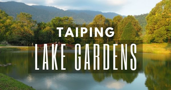 Taiping Lake Gardens & Other Must-see Taiping Attractions (Ipoh 2021)