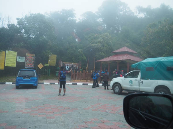 Tourist groups arriving at the mossy forest of Gunung Brinchang, Cameron Highlands