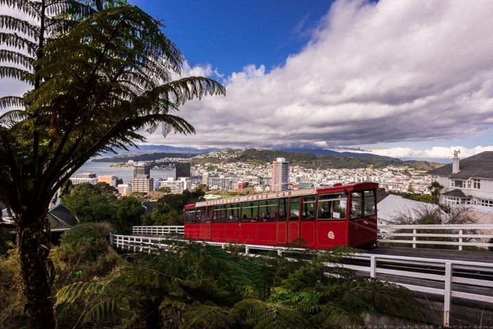 Trip Advisor photograph of the red iconic cable car in Wellington New Zealand - more things to do in Wellington on www.travelswithsun.com