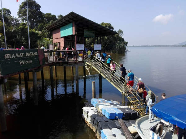 Visitors alighting from the ferry to Bukit Merah Orang Utan Island