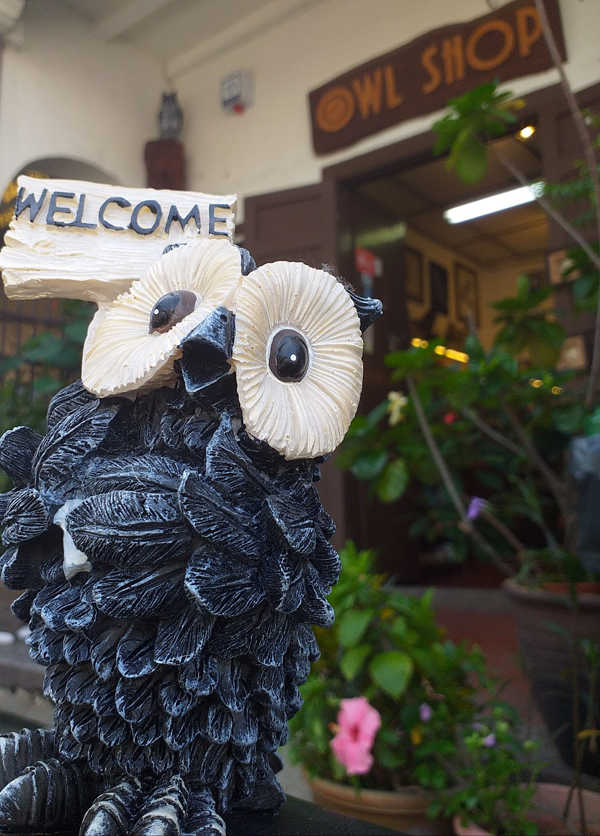 Welcome To The Owl Shop In Penang