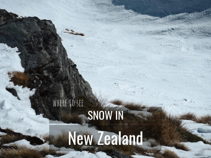 Where to see New Zealand Snow