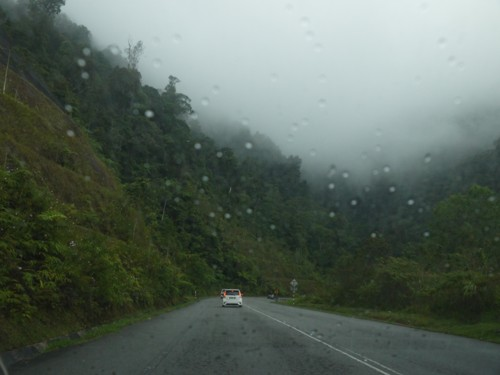getting up to Cameron Highlands from Ipoh